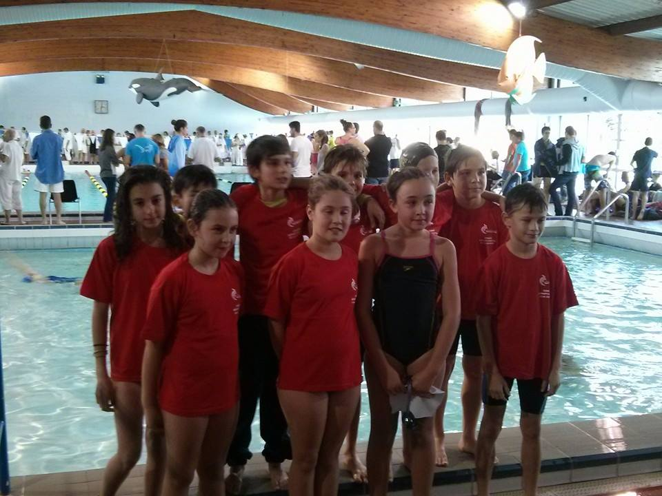 as ambar s natation pass 39 comp tition le bouscat