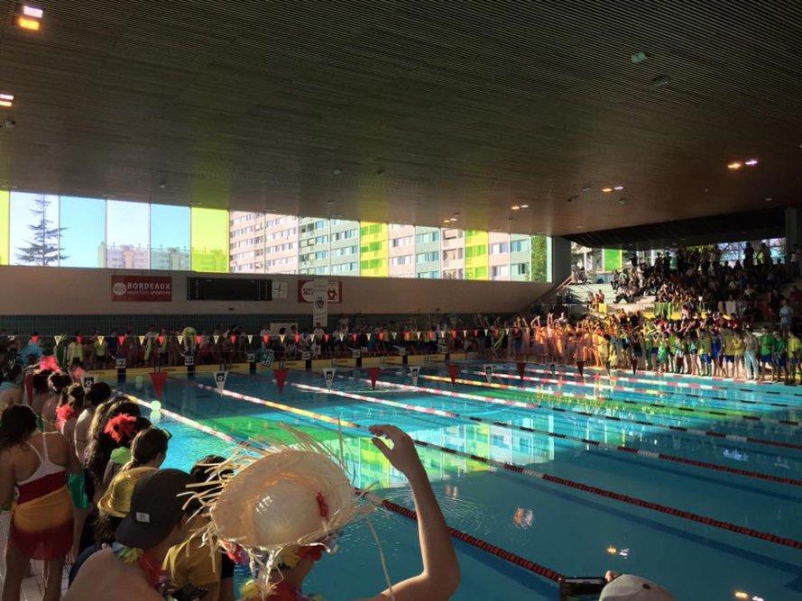 As ambar s natation album abcnatation for Piscine grand parc