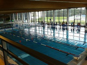 Ujs la mulati re natation natathlon d partemental for Piscine renault venissieux