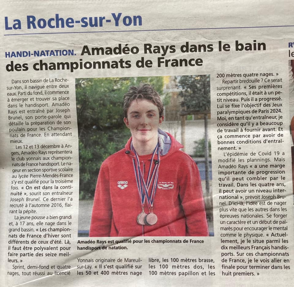 Amedeo Rays- Le journal du pays yonnais