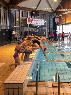 plongeons ecole natation